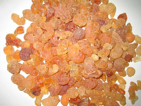 "Gum Arabic, also known as ""desert gold of Africa"" is a natural gum made of the hardened sap of two species of the acacia tree."