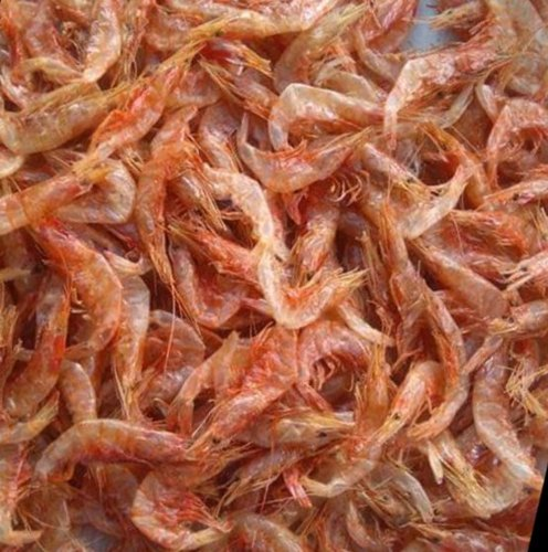 Dry Shrimps